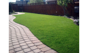 Pavers, Turf & Sod